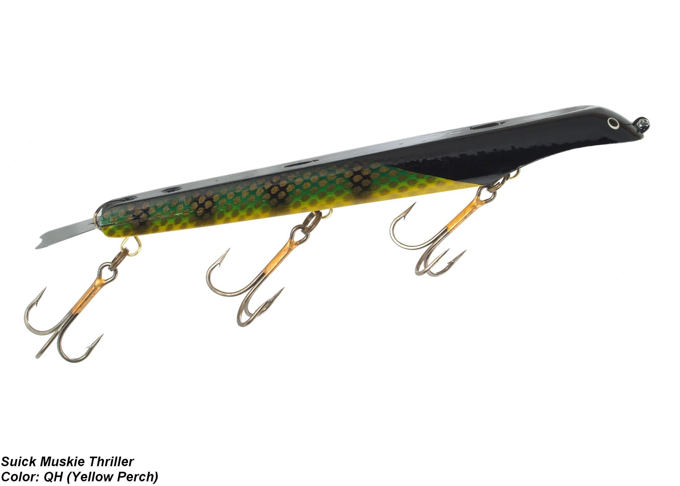 """Suick 12"""" Non-Weighted Magnum Thriller [Yellow Perch Gold Scales Black Head & Top]"""